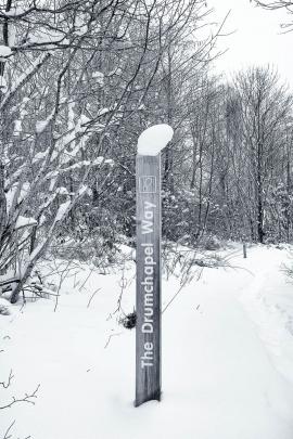 Garscadden Wood  (East) - 2